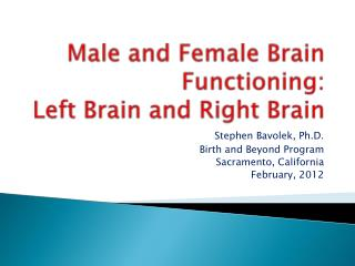 Male and Female  B rain Functioning:  Left Brain and Right Brain