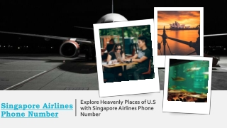 Explore heavenly places of U.S with Singapore Airlines Phone Number