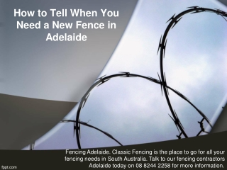 How to Tell When You Need a New Fence in Adelaide