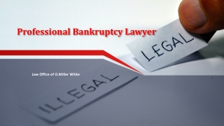 Professional Bankruptcy Lawyer