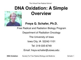 DNA Oxidation: A Simple Overview
