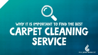 Why It Is Important To Find the Best Carpet Cleaning Service