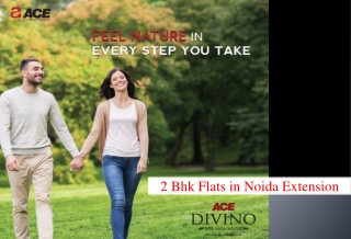2 BHK Flats in Noida Extension - Ace Divino