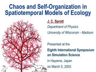Chaos and Self-Organization in Spatiotemporal Models of Ecology