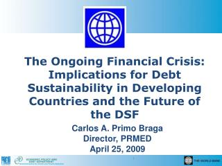 The Ongoing Financial Crisis: Implications for Debt Sustainability in Developing Countries and the Future of the DSF