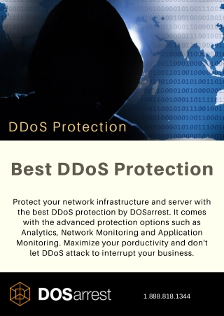 Best DDoS Protection