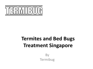 Termites and Bed Bugs Treatment Singapore