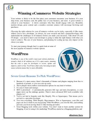 Winning eCommerce Website Strategies   eBusiness Guru