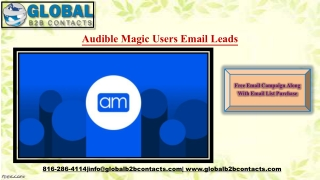 Audible Magic Users Email Leads