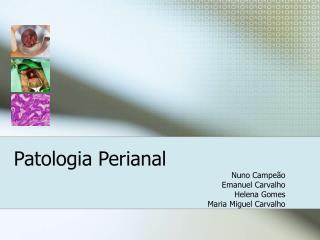 Patologia Perianal