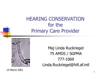 HEARING CONSERVATION  for the Primary Care Provider