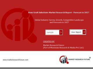 Bone Graft Substitute Market 2019 Size Overview