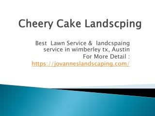 TOP lawn service &LANDSCPAING SERVICE IN aUSTIN,TX