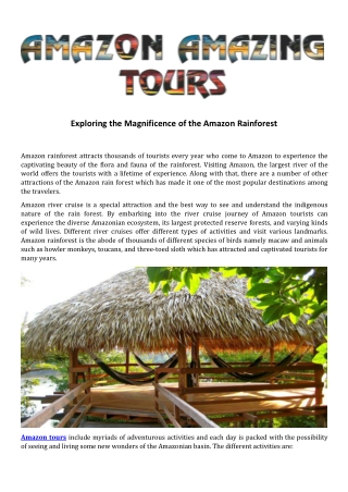 Exploring the Magnificence of the Amazon Rainforest