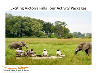 Exciting Victoria Falls Tour Activity Packages