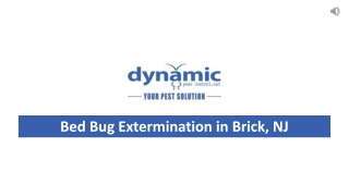 Bed Bug Extermination in Brick, NJ (732.505.3277)