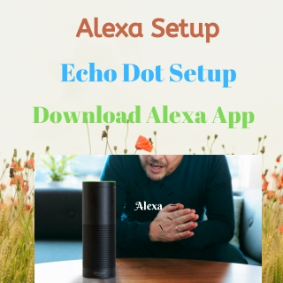 Instructions for Alexa Setup or Amazon Echo [Alexa App Echo Setup]