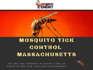 Mosquito Control Service MA