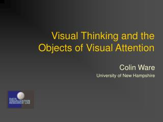Visual Thinking and the Objects of Visual Attention