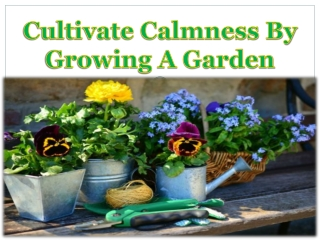 Cultivate Calmness By Growing A Garden