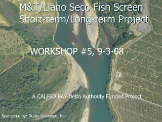 M&T/Llano Seco Fish Screen Short-term/Long-term Project
