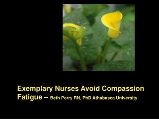 Exemplary Nurses Avoid Compassion Fatigue –  Beth Perry RN, PhD Athabasca University