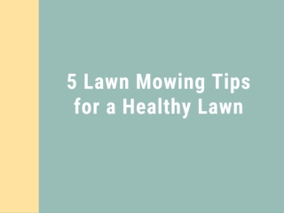 5 Lawn Mowing Tips for a Healthy Lawn