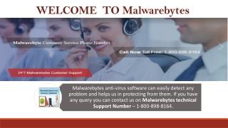 Malwarebytes Helpline Number – 1-800-898-8164