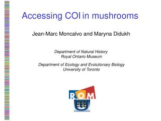 Accessing COI in mushrooms