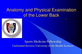 Anatomy and Physical Examination of the Lower Back
