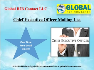 Chief Executive Officer Mailing List