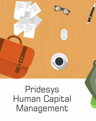 Human Capital Management | Pridesys IT Ltd