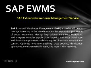 SAP Warehouse Management PDF