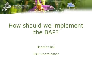 How should we implement the BAP?