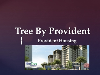 The Tree By Provident