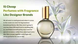 15 Cheap Perfumes With Fragrance Like Brands