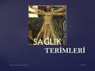 TERİMLERİ