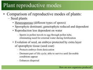 Plant reproductive modes