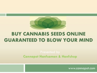 Buy Cannabis Seeds Online Guaranteed to Blow Your Mind