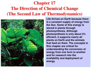 Chapter 17  The Direction of Chemical Change (The Second Law of Thermodynamics)