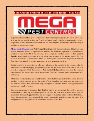 Find Out the Problem of Pest in Your Home – Stay Safe
