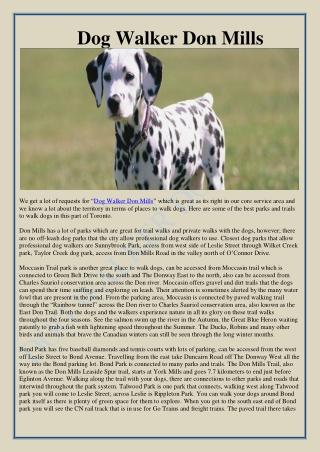 dog walker don mills