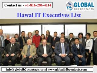 Hawai IT Executives List