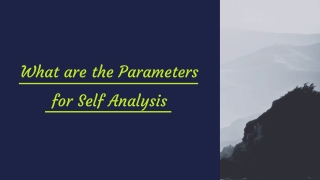 What are the Parameters for Self Analysis