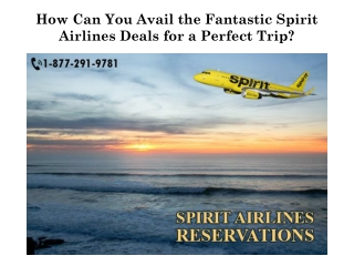 How Can You Avail the Fantastic Spirit Airlines Deals for a Perfect Trip?