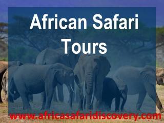 africa tours and safaris