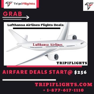 Cheap Lufthansa international flight booking online