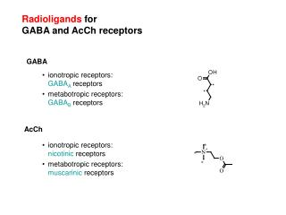 Radioligands  for GABA and AcCh receptors