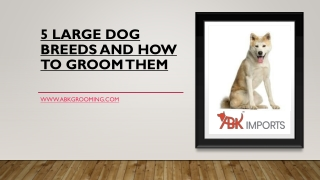 5 LARGE DOG BREEDS AND HOW TO GROOM THEM