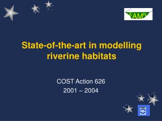 State-of-the-art in modelling riverine habitats
